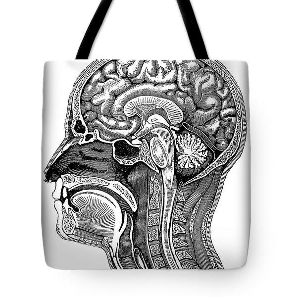Head And Brain Anatomy Tote Bag
