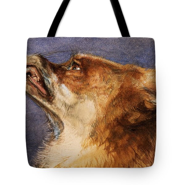 Head Of A Fox Tote Bag by John Frederick Lewis