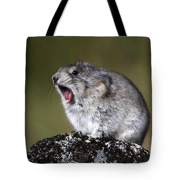 Hear Me Roar Tote Bag