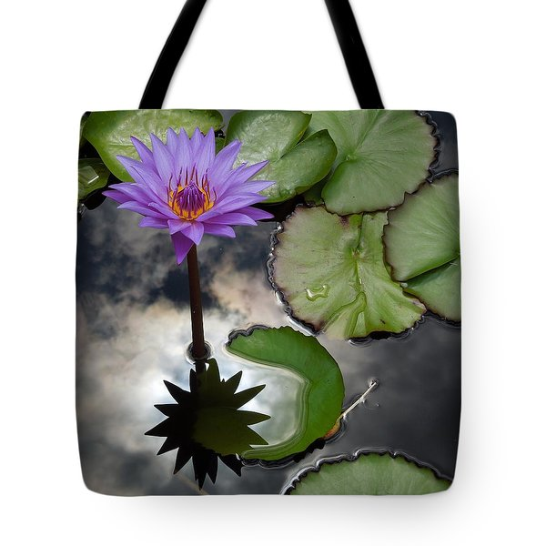 Heaven And Earth Reflections Tote Bag