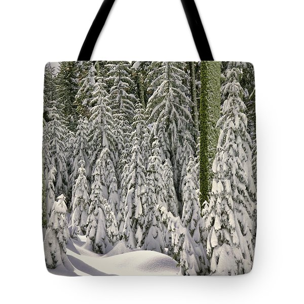 Heavy Snow Tote Bag by Garry Gay