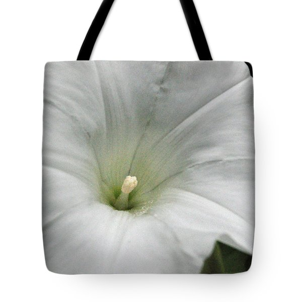 Tote Bag featuring the photograph Hedge Morning Glory by Tikvah's Hope