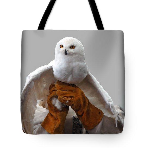 Hedwig Harry Potters Pet Tote Bag by LeeAnn McLaneGoetz McLaneGoetzStudioLLCcom