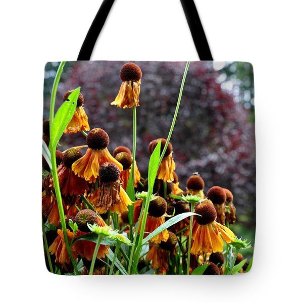 Helenium Sneezeweed  Tote Bag by Tanya  Searcy