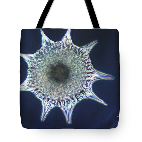 Heliodiscus Sp. Radiolarian Lm Tote Bag by Eric V. Grave