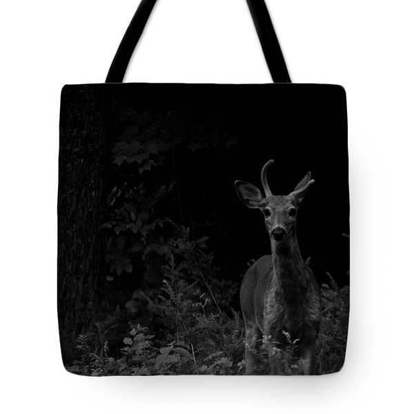 Tote Bag featuring the photograph Hello Deer by Cheryl Baxter