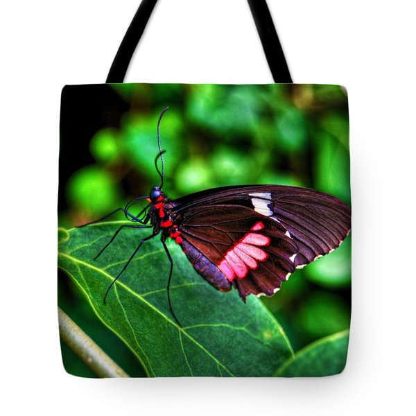 Hello Flutterby Tote Bag by Randy Aveille