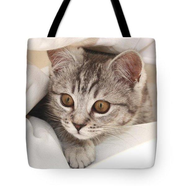 Hello Kitten Tote Bag by Claudia Moeckel