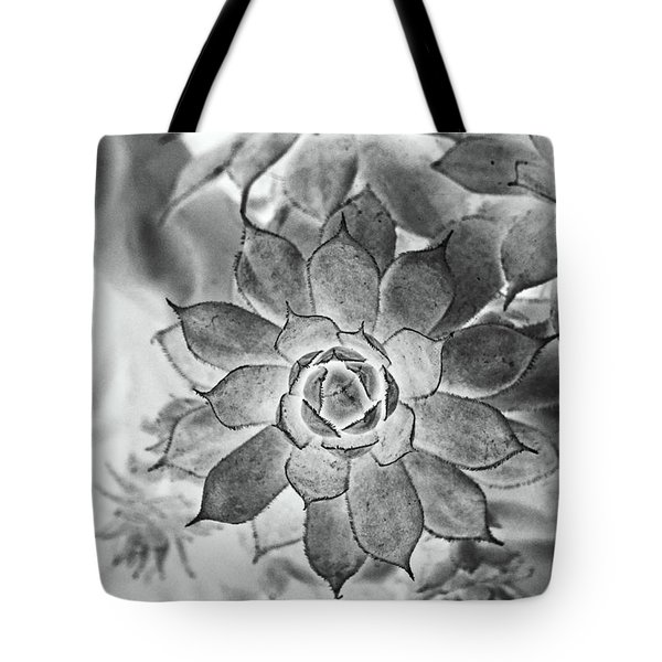 Hen And Chicks Digital Art Tote Bag by Debbie Portwood