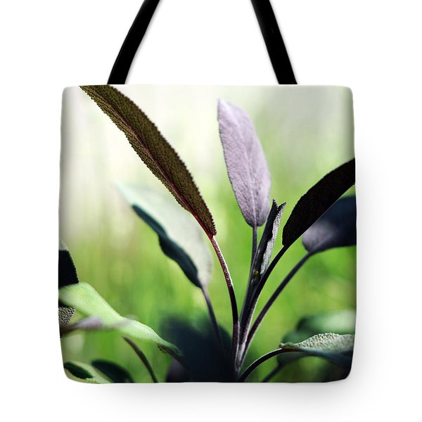 Herb Garden Purple Sage Tote Bag