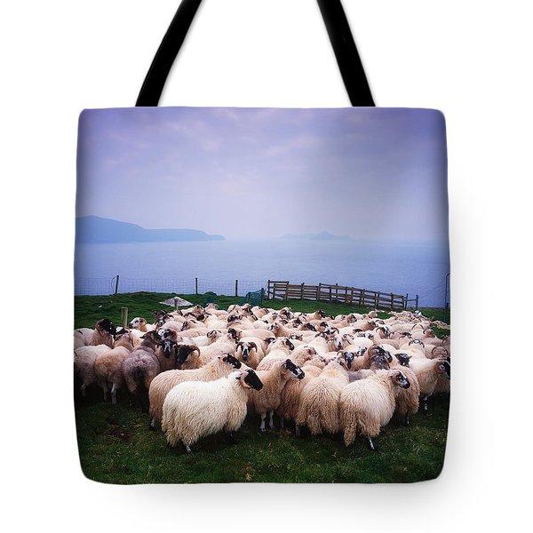 Herding Sheep, Inishtooskert, Blasket Tote Bag