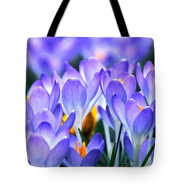 Here Come The Croci Tote Bag
