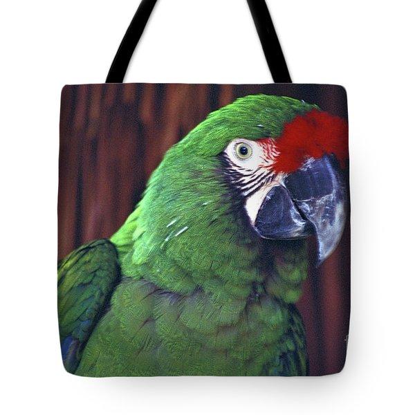 Here's Looking At You Military Macaw Riviera Maya Mexico Tote Bag