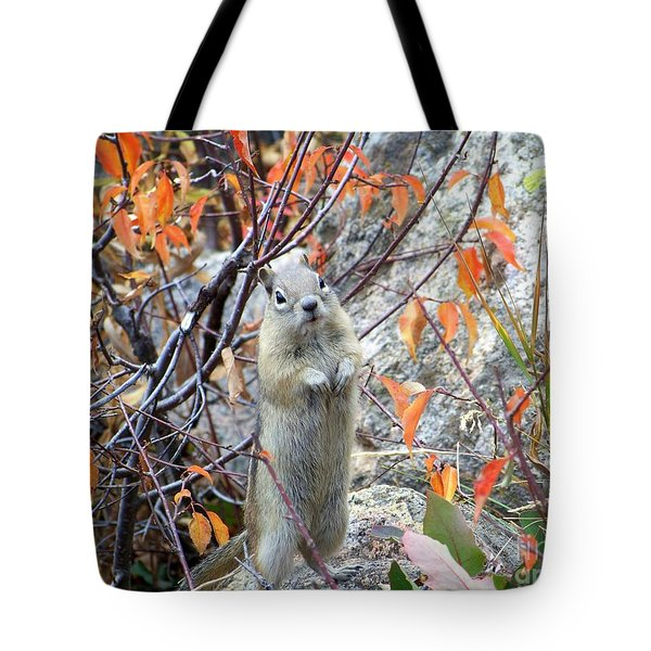 Hey There Tote Bag by Dorrene BrownButterfield