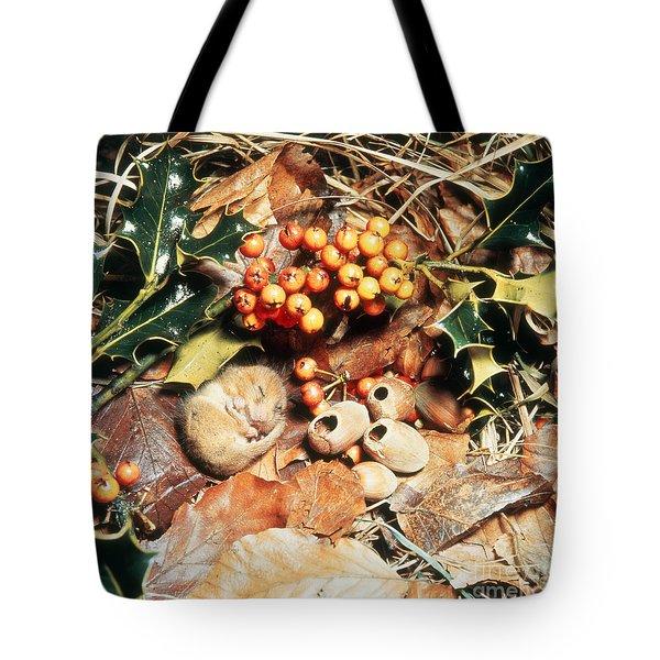 Hibernating Dormouse Tote Bag by Jane Burton
