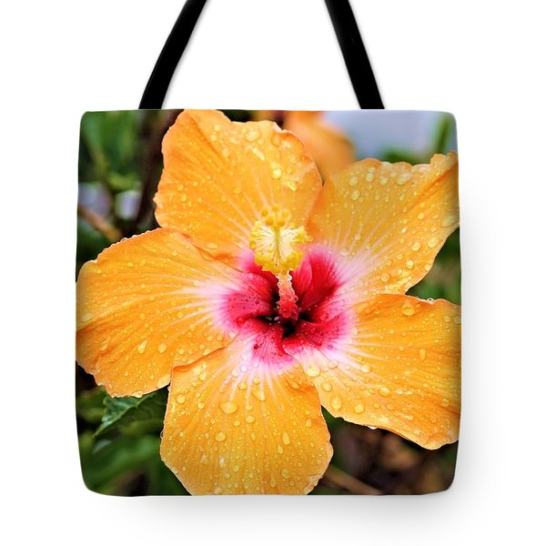 Hibiscus Beauty Tote Bag by Elizabeth Budd