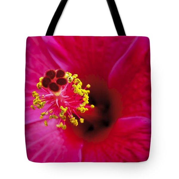Hibiscus Macro Tote Bag by Joe Carini - Printscapes