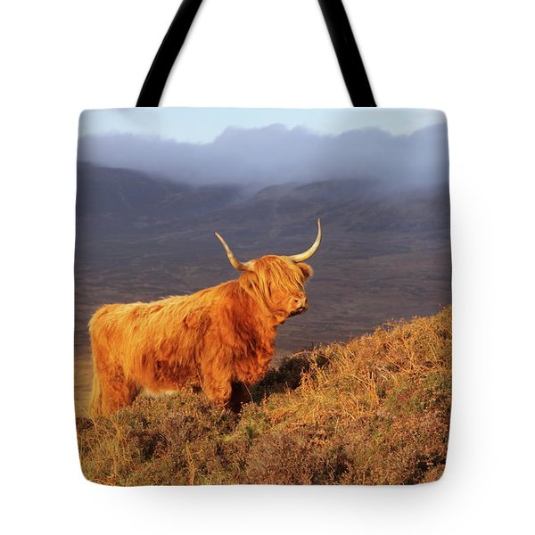 Highland Cattle Landscape Tote Bag