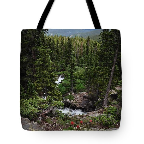 Hiking In Colorado Tote Bag