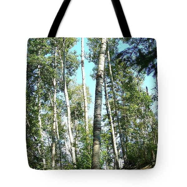 Tote Bag featuring the photograph Hiking Trail by Jim Sauchyn