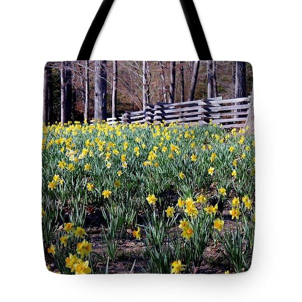 Hills Of Daffodils Tote Bag