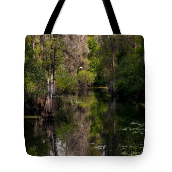 Tote Bag featuring the photograph Hillsborough River In March by Steven Sparks