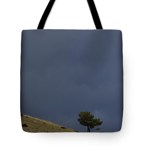 Tote Bag featuring the photograph Hillside Tree by J L Woody Wooden