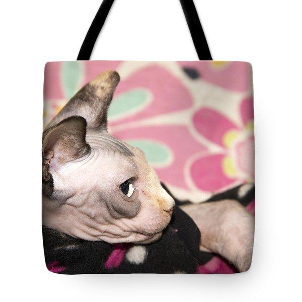 Hippie Cat Tote Bag