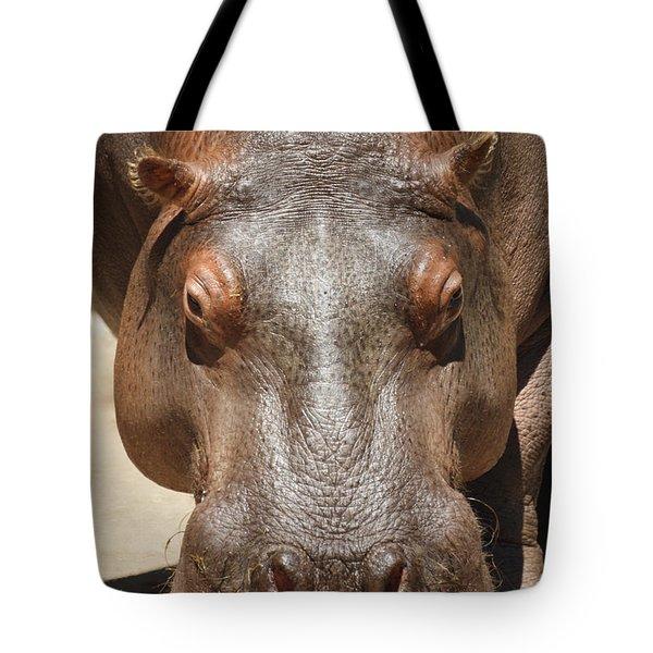 Hippopotamus Tote Bag by Ernie Echols