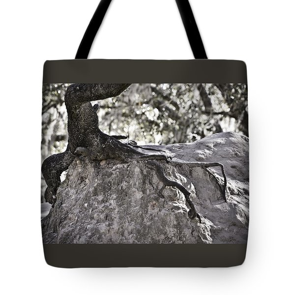 Holding On Tote Bag by Carolyn Marshall