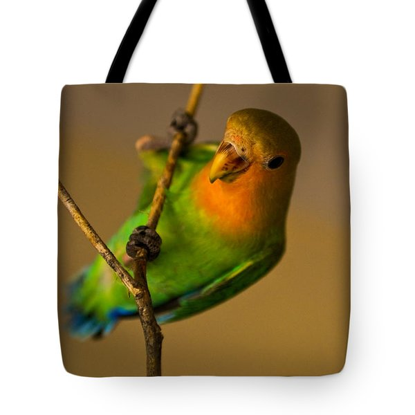 Holding Tight Tote Bag by Syed Aqueel