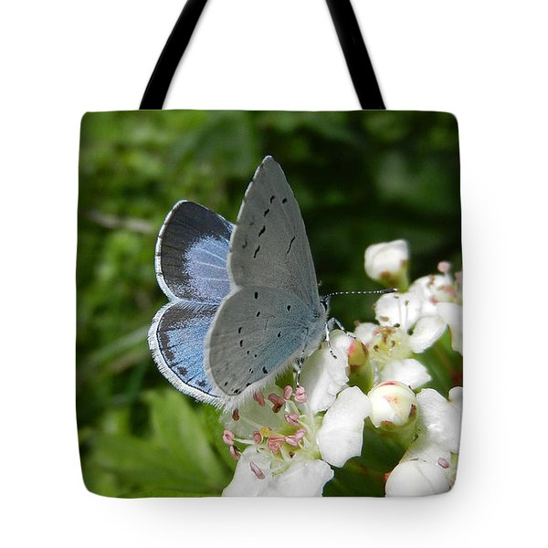 Holly Blue Tote Bag