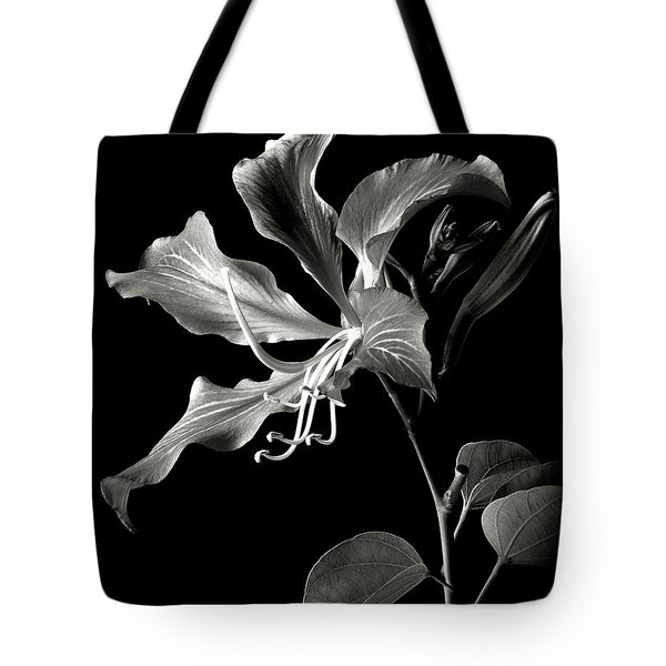 Hong Kong Orchid In Black And White Tote Bag
