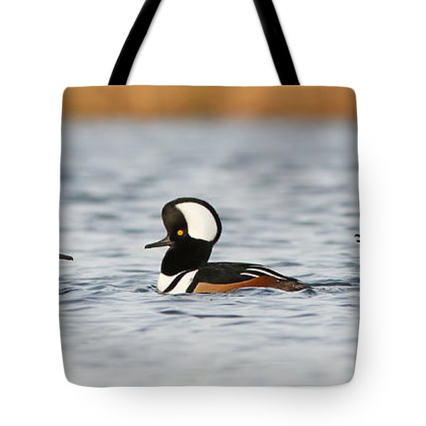 Hooded Mergansers Tote Bag by Mircea Costina Photography