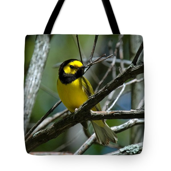 Tote Bag featuring the photograph Hooded Warbler Dsb166  by Gerry Gantt