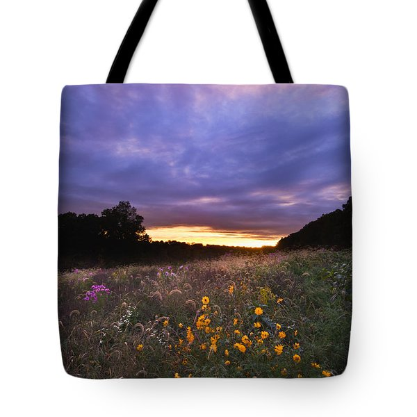 Hoosier Sunset - D007743 Tote Bag by Daniel Dempster