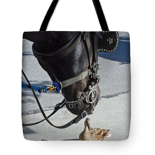 Horse Feathers Tote Bag by Lisa Phillips