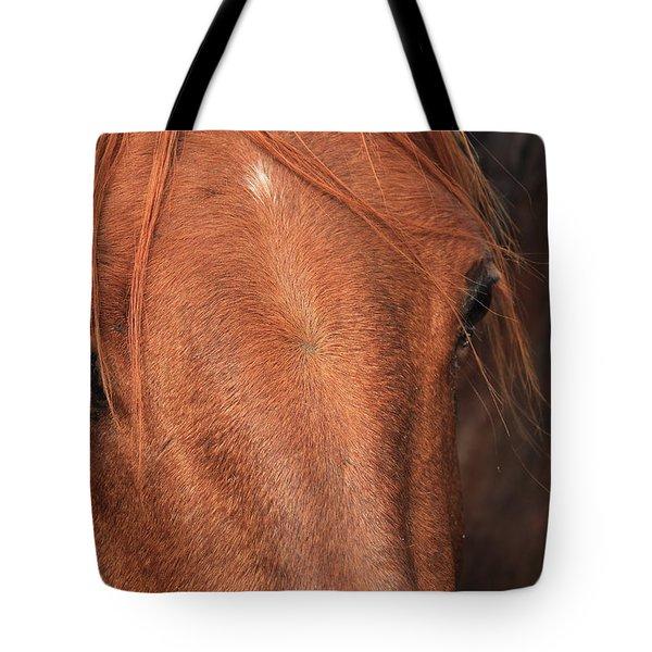 Horse Hide Tote Bag