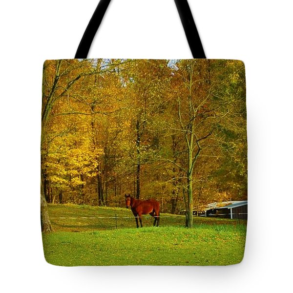 Horse In Autumn Tote Bag by Kathleen Struckle