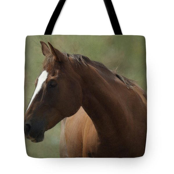 Horse Painterly Tote Bag by Ernie Echols