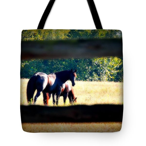 Tote Bag featuring the photograph Horse Photography by Peggy Franz