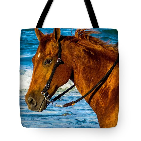 Horse Portrait  Tote Bag by Shannon Harrington