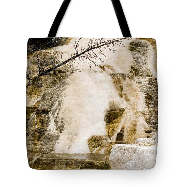 Tote Bag featuring the photograph Hot Spring Pine by J L Woody Wooden