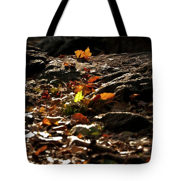 How We Should Leave... Tote Bag