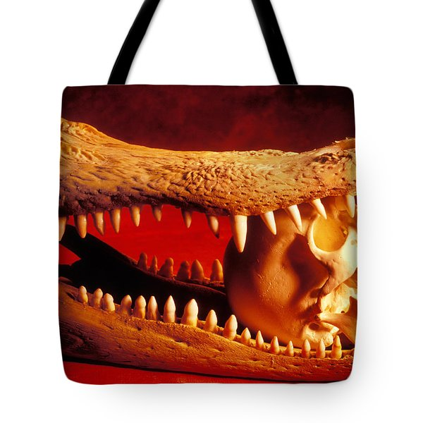 Human Skull  Alligator Skull Tote Bag by Garry Gay