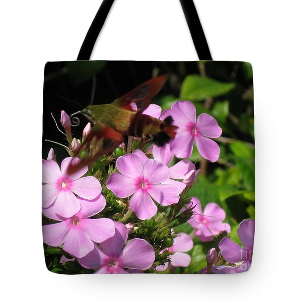 Tote Bag featuring the photograph Hummingbird Moth  by Nancy Patterson