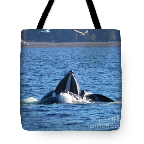 Humpback Whale Tote Bag by Pamela Walrath