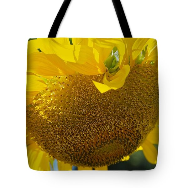 Tote Bag featuring the photograph Hungover by Joseph Yarbrough
