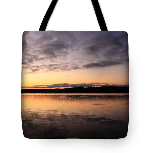 Hungry Fish At Sunrise Tote Bag by Catie Canetti