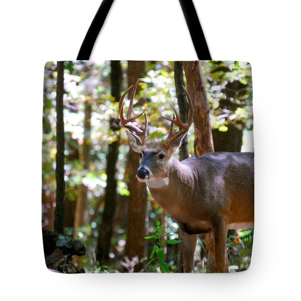 Tote Bag featuring the photograph Hunters Dream 10 Point Buck by Peggy Franz